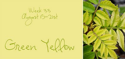 Green_yellow_week_33