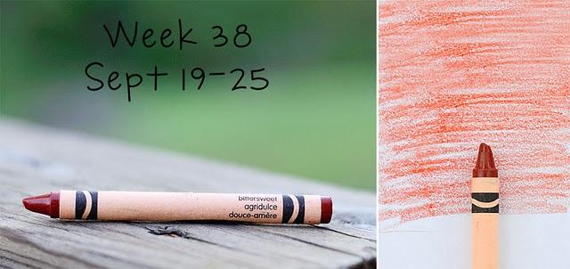 Week-38_Bittersweet